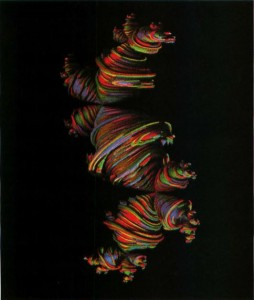 "One of Alan Norton's ""dragon"" fractals"