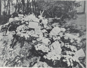 The British buried Richthofen with full military honors, and even dropped pictures of his grave behind German lines. Mannock, needless to say, wasn't susceptible to such sentimentality.